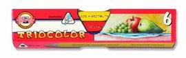 Pastelky 3151/ 6 TRIOCOLOR triangular lakované