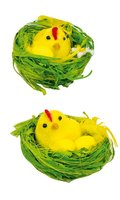 Velikonoční kuřátko v hnízdě  8cm  8484