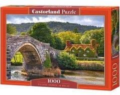 Puzzle Castorland 1000 dílků - různé motivy