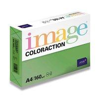 Papír COLORACTION A4/160g/250 Sytá zelená - DG47 Dublin