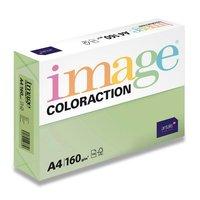 Papír COLORACTION A4/160g/250 Pastelově zelená - MG28 Forest