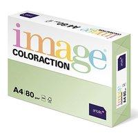 Xerografický papír Coloraction, Jungle, A4, 80 g/m2, světle zelený, 500 listů, vhodný pro inkoustový