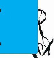 Spisové desky A4 lakované, modré, bez štítku, HIT 175.01